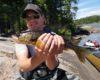 spring walleye